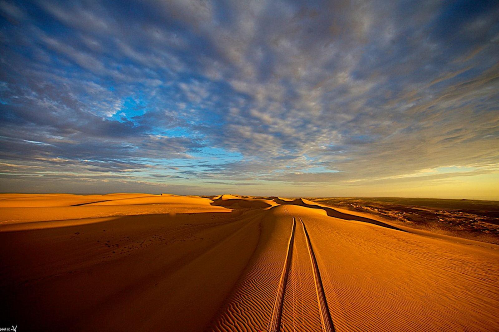 Namibwüste_skelettküste_hautnah