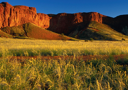 csm_Namib-Desert-Lodge04_59d05d8dd7