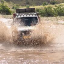 Über Free & Wild Africa